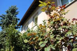 Ferienwohnung Roser, Am Hungerberg 2, 79331, Teningen