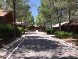 Cabañas Valle del Cabriel, Crta N-322 Km-423, 02215, Villatoya