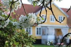 Karlslund, Gamla Tågarpsvägen, 338, 253 56, Hässlunda