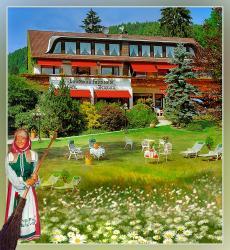 Wellness und Romantik Hotel Helmboldt, An der Waldpromenade 15, 37441, Bad Sachsa