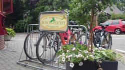 Boschzicht, Zuidwolderweg 38, 7932 PR, Echten