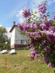 Venikula Guest House, Lovnidol , 5423, Lovnidol