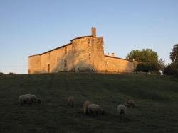 Le Château De Sauros, Château de Sauros, 33430, Bazas