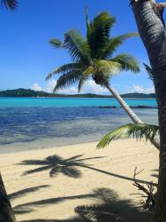 Coconut Beach Resort, Tavewa, Yasawa Islands,, Tavewa