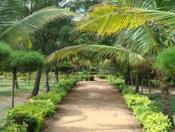 Hotel Village Vacances Awale Plage, Ewe Condji - Grand Popo - BENIN,, Grand-Popo