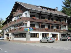 Alemannenhof Hotel Engel, Hauptstraße 6, 79736, Rickenbach