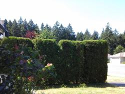 Aurora's Bed and Breakfast, 5391 Colinwood Drive, V9T 6G2, Nanaimo