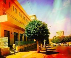 Sunshine Hotel, 76 BDHO Ave,, Asmara