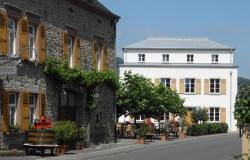 Weingutshotel St. Michael, Moselweinstraße 4, 54487, Wintrich
