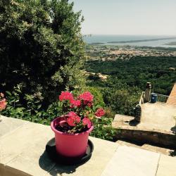 Fior Et Andrea, 10  fondu di u paese rte du village Furiani, 20600, Furiani