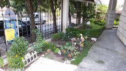 Guest House Orfey, ul. Pirin 19, 9649, Kranevo