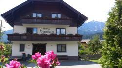 Gasthof - Pension Durnthaler, Nr. 3, 9631, Tröpolach