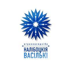 Usadba Nalibokskie Vasil'ki, Podlesnaya, 16, 222357, Belokorets