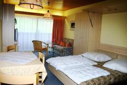 Appartement Edelweiss, Tauplitz 195, Top 43, 8982, Tauplitz
