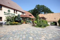 Landhotel Zur Guten Einkehr, Techritzer Straße 2, 02692, Grubschütz