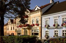 Hotel Restaurant Modrá Hvězda, náměstí T. G. M. 159, 334 41, Dobřany