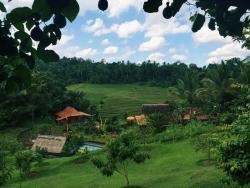 Bali Lush, Manikyang, 82162, Selemadeg
