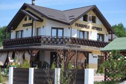 Pensiunea Antares, Sat Dancaș, Str. Scolii, Nr.7, comuna Miroslava, 707311, Dancaş