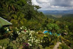 Mirador Osa, Los Mogos de Sierpe,18 km del Chacarita Carretera a Puerto Jimenez, 50603, Mogos