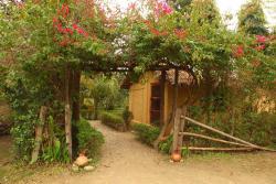 Forest Hideaway Hotel & Cottages, Bardia National Park, 00977, Bhurkīā