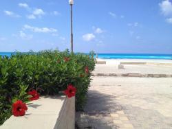 Togareen Resort Apartments, Togareen Resort, North Coast  63-th Km, 51717, Al Ḩammām