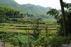Anji Green Villa, Shujingwu, Wuhe Village, Tianhuangping Town, 313300, Anji