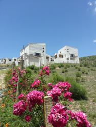 Cabañas Altos de Tafi, Barrio la Banda Cerro el pelao s/n, 4137, Тафи-дель-Валье