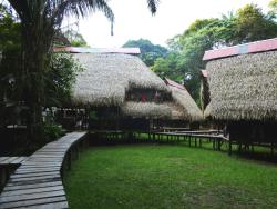 Jamu Lodge, Reserva de Producción Faunística del Cuyabeno, EC170150, Puerto Montúfar