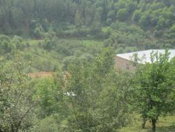 Getik Bed And Breakfast, Getik Village, 4 Ulica, Dom13, Gegharkunik Province, 1309, Nor Bashgyukh
