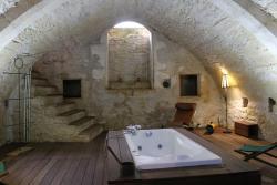 Chateau de Forges, chateau de Forges, 36300, Concremiers