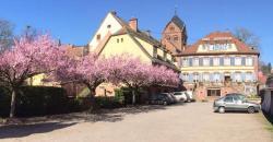 Hôtel Du Herrenstein, 20, Rue Du Général Koenig, 67330, Neuwiller-lès-Saverne