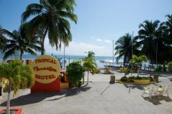 Tropical Paradise, Number 1 Luciano Reyes, 0000, Caye Caulker