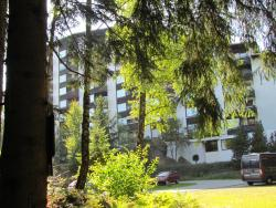 Appartementhaus Fuchsenstein, Fuchsensteinstraße 13, 94518, Spiegelau