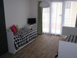 Apartment Třeboň, Lázeňská 1284, 379 01, Třeboň