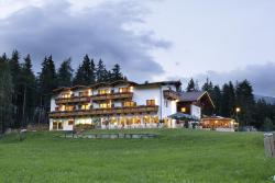 Familienhotel Moos-Alm, Schloßberg 24, 9900, Lienz