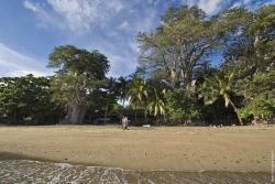 Le Jardin Maore, Plage N'Gouja - BP 636, 97620, Kani Keli
