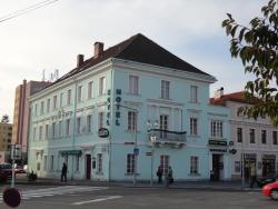 Hotel U Hroznu, Masarykovo náměstí 27, 295 01, Mnichovo Hradiště