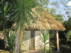 Chaya Maya Jungle Lodge, Young Gal Road, 00011, Teakettle Village