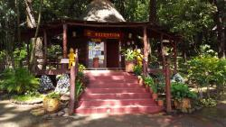 Hotel Los Mangos, 300 metros del Centro de Montezuma carretara a Cabuya, 60105, Montezuma