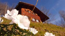 Ferienhaus Gfell Matt Glarus Suisse Welterbe UNESCO Sardona, Weissenberge 101, 8766, Matt