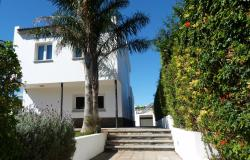 Trekking House Sosa, Camino Jardina N 41, 38293, Las Mercedes