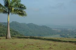 Casa de campo, Fazenda Angélica, 13590-000, Dourado