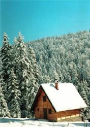 Holiday Home Ljubicica, Mitrovac, 31250, Mitrovac