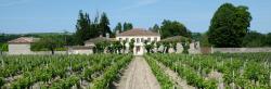 Château Beau-Site, 35 route de Mathas, 33640, Portets