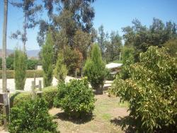 Campo y Playa, Ruta F20 (Nogales - Puchuncaví) Kilometro 17.3, 2491043, Puchuncaví