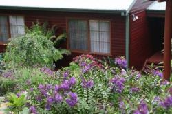 Bluebell Cottage, 61 Mount Street, 2780, Leura