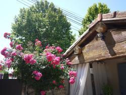 Les Mazets Des Robiniers, 592 Rue Des 3 Fontaines, 13123, Saliers