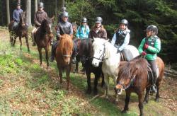 Pferdehof Koaser Minerl, Rabelsberg 8, 4843, Ampflwang im Hausruckwald