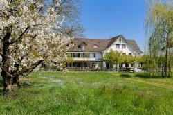Landgasthof Seelust, Wiedehorn, 9322, Egnach