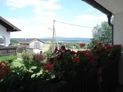 Haus Steinwaldblick, Lohweg 3, 95682, Bernlohe